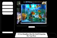 Cara-Memelihara-Ikan-Mas-Koki