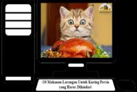Makanan-Larangan-Untuk-Kucing-Persia