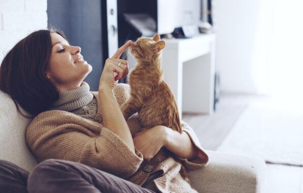 Tanda-Kucing-Cari-Perhatian