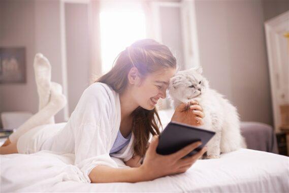 Cara-Membuat-Kucing-Jinak-Kepada-Kita