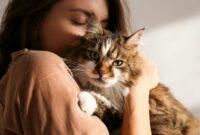 Pahala-Memelihara-Kucing