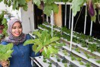 Cara-Menanam-Sayuran-Organik-di-Pekarangan-Rumah